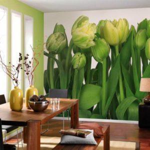 Фотообои, салатовые тюльпаны
