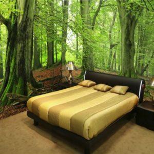 Фотообои, лес